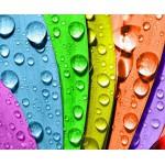 Выбор резиновой краски